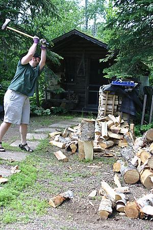 Chopping 9